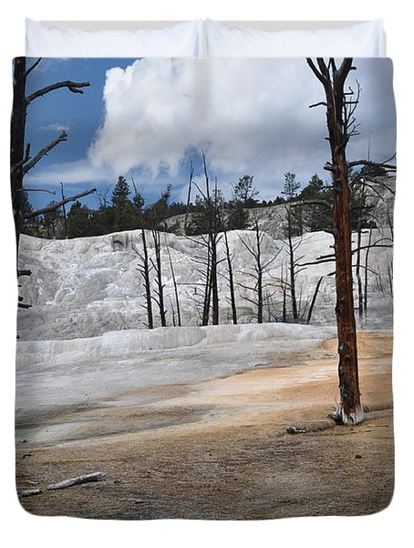 A Flower Blooms In Mammoth Hot Springs Duvet Cover