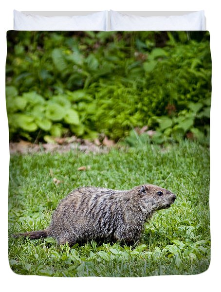 A Groundhog Marmota Monax Enjoys A Meal Duvet Cover