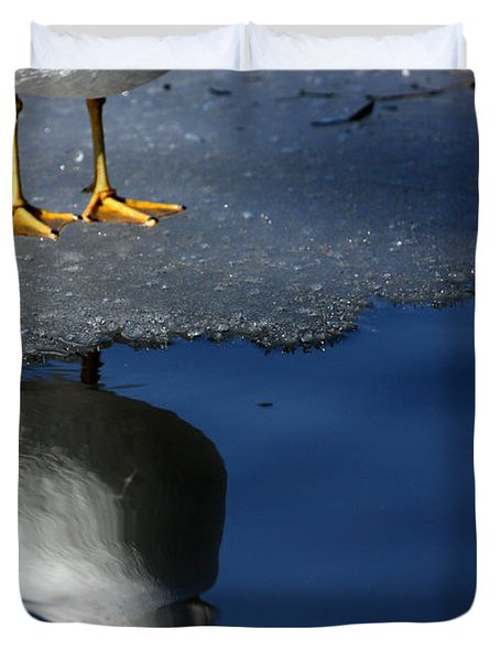 A Gull Reflects Duvet Cover by Karol Livote