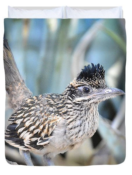 A Juvenile Greater Roadrunner  Duvet Cover
