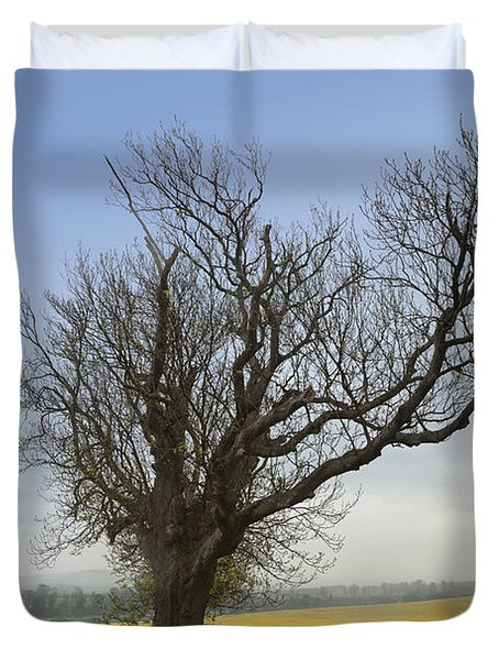 A Lone Tree On The Edge Of A Yellow Duvet Cover by John Short