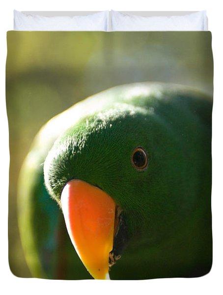 A Male Solomon Island Eclectus Parrot Duvet Cover