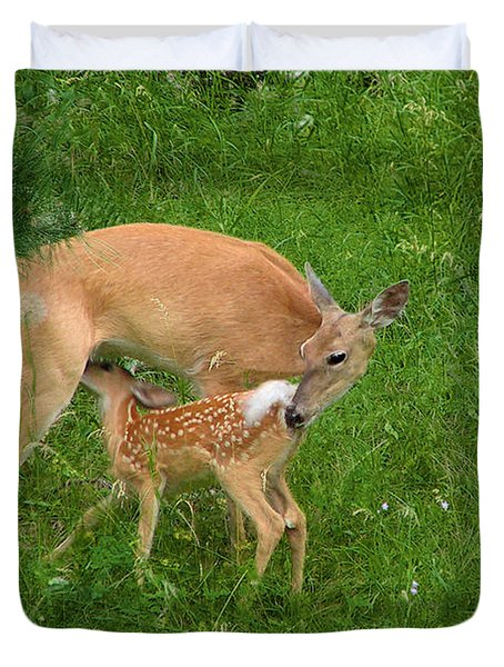 A Mother's Love - Doe And Fawn Duvet Cover by Christine Till