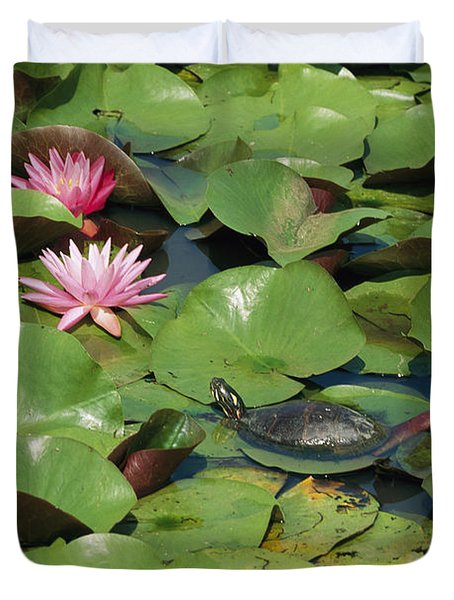 A Painted Turtle Rests On A Water Lily Duvet Cover