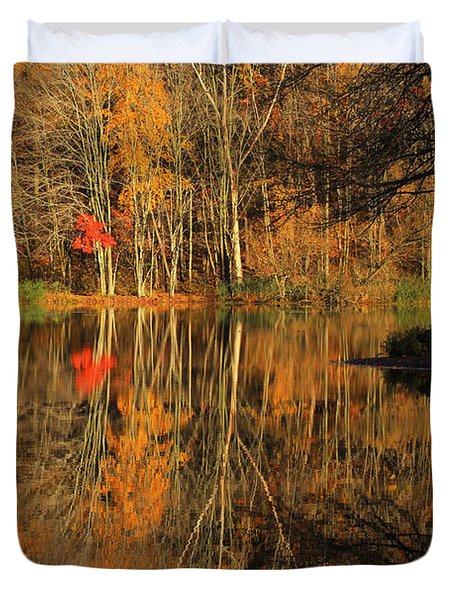 A Reflection Of October Duvet Cover by Karol Livote