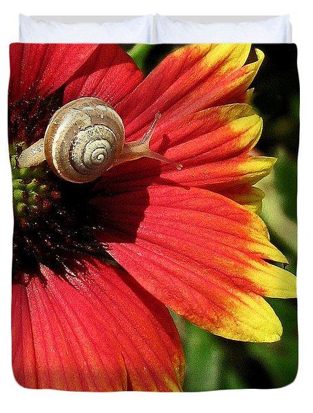 A Snail's Pace Duvet Cover