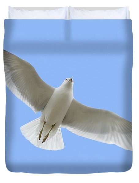 A Soaring Dove Duvet Cover by Don Hammond