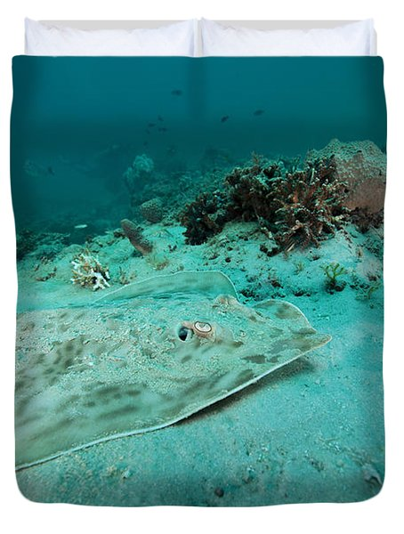 A Southern Stingray On The Sandy Bottom Duvet Cover by Michael Wood