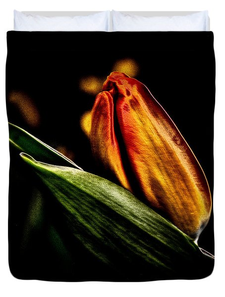 A Tulip With Sheen Duvet Cover by David Patterson