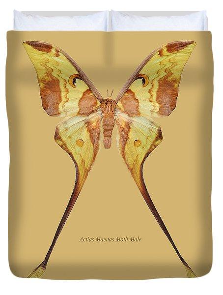 Actias Maenas Moth Male Duvet Cover