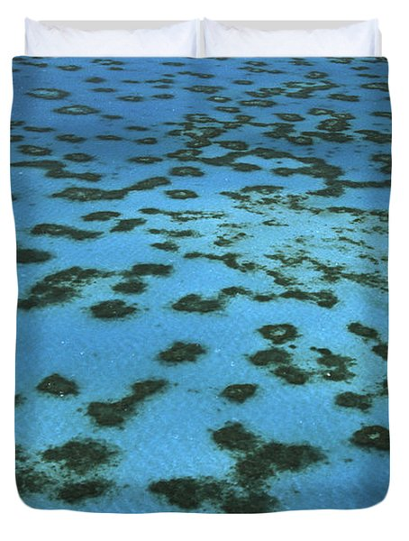 Aerial View Of Great Barrier Reef Duvet Cover by L Newman and A Flowers and Photo Researchers
