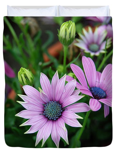 Duvet Cover featuring the photograph African Daisy by Eva Kaufman
