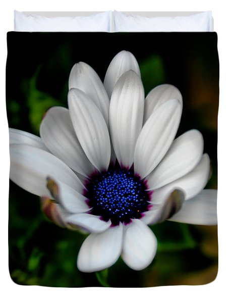 Duvet Cover featuring the photograph African Daisy by Lynne Jenkins
