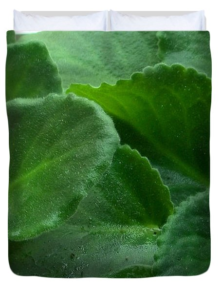 African Violets Intertwined II Duvet Cover by Nancy Mueller