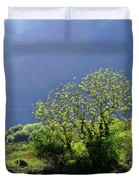 Against The Light Duvet Cover by Barbara Walsh