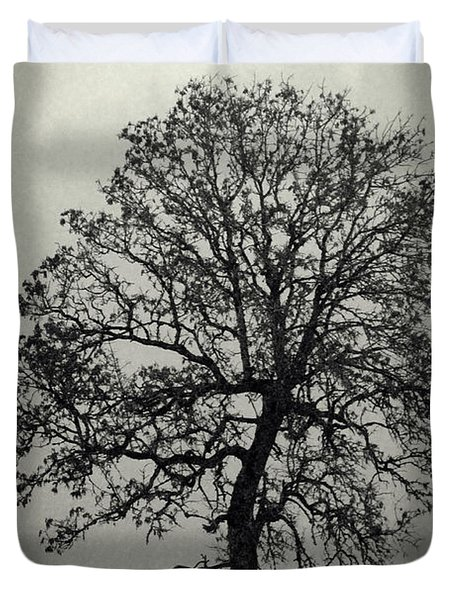 Age Old Tree Duvet Cover by Steve McKinzie