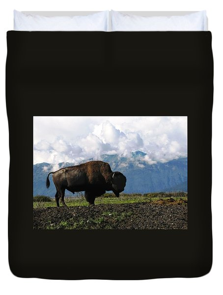 Duvet Cover featuring the photograph Alaskan Buffalo by Katie Wing Vigil