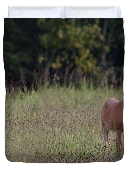 Alert Doe And Fawn Duvet Cover
