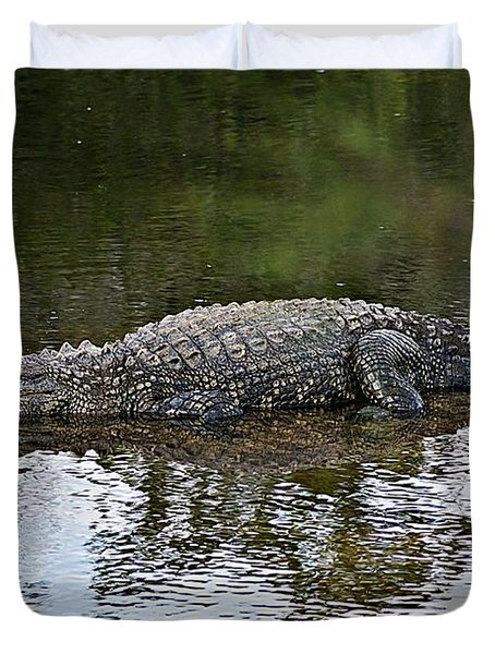 Alligator 1 Duvet Cover by Joe Faherty