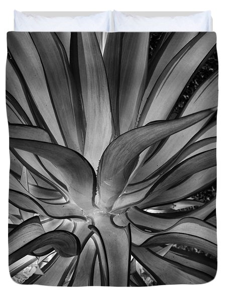 Aloe Black And White Duvet Cover by Rebecca Margraf