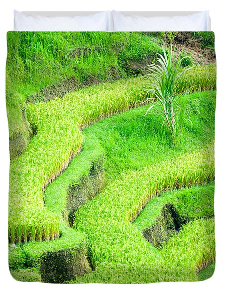 Duvet Cover featuring the photograph Amazing Rice Terrace Field by Luciano Mortula