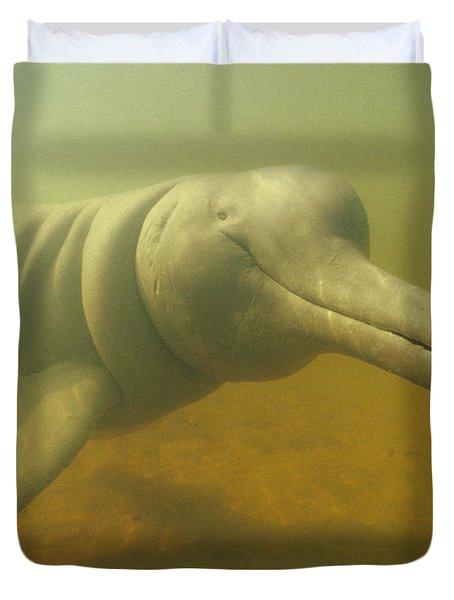 Amazon River Dolphin Portrait Brazil Duvet Cover by Flip Nicklin