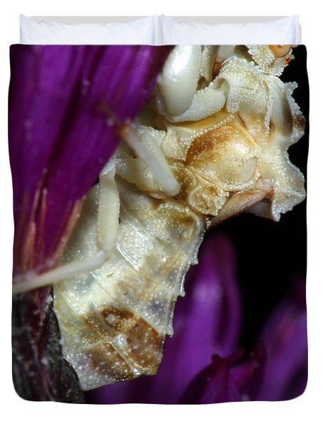 Ambush Bug On Ironweed Duvet Cover