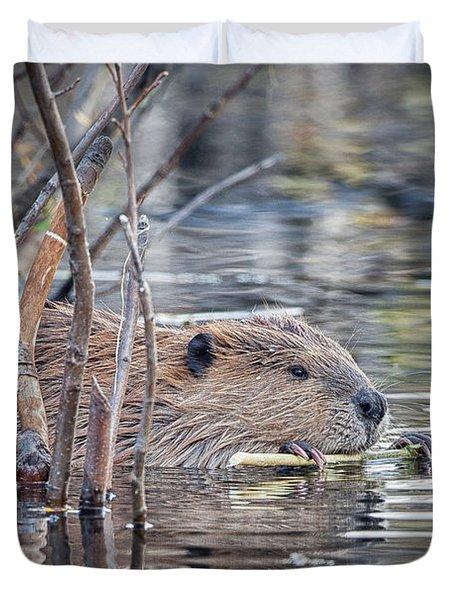 American Beaver Duvet Cover
