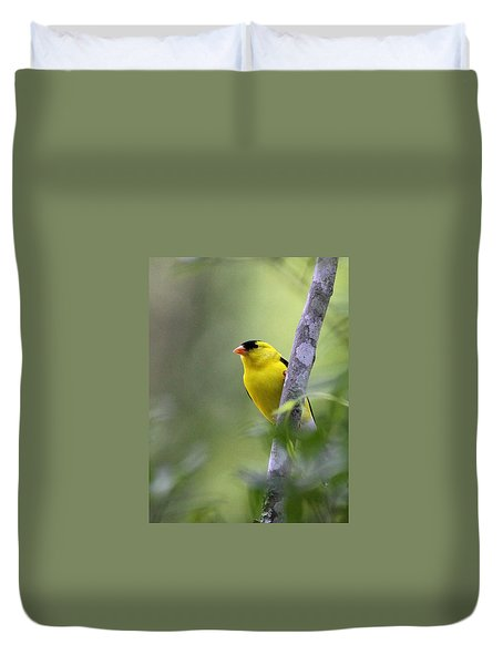 American Goldfinch - Peaceful Duvet Cover