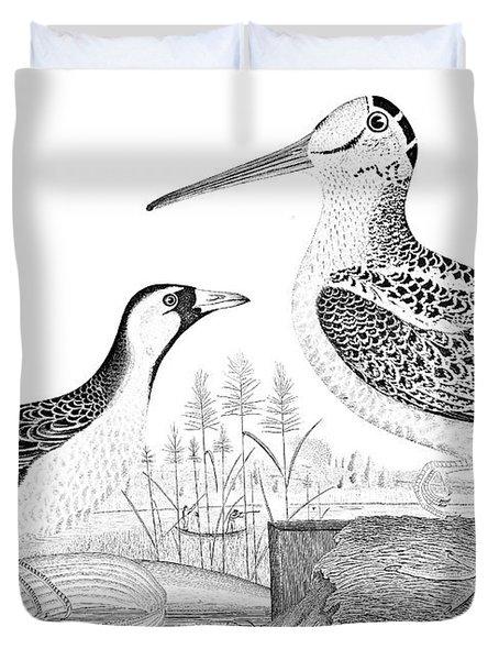 American Ornithology Duvet Cover