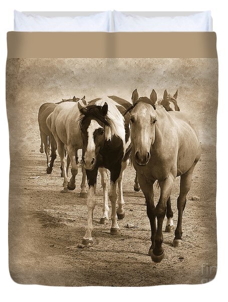 American Quarter Horse Herd In Sepia Duvet Cover by Betty LaRue