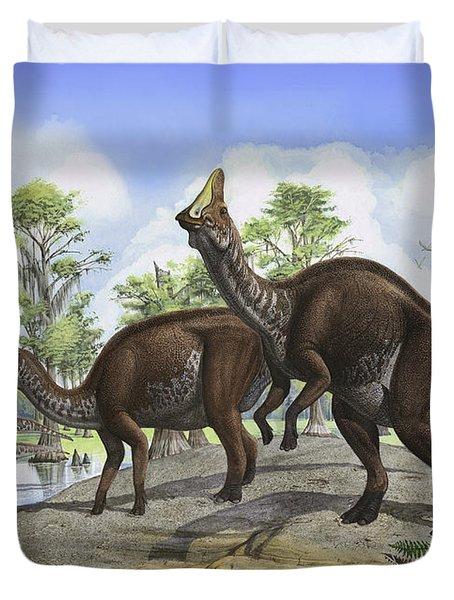 Amurosaurus Riabinini Dinosaurs Grazing Duvet Cover by Sergey Krasovskiy