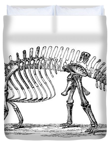 Apatosaurus Excelsus,  Aka Brontosaurus Duvet Cover by Science Source