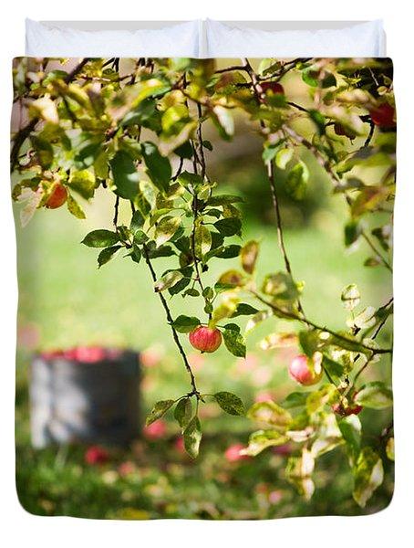 Apple Tree Duvet Cover by Kati Molin