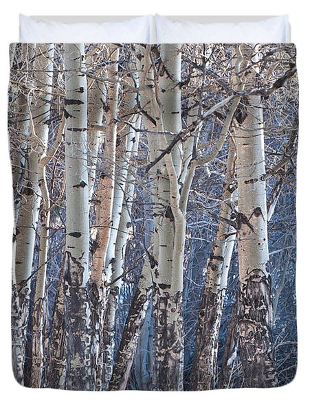 Duvet Cover featuring the photograph Aspen Grove by Colleen Coccia