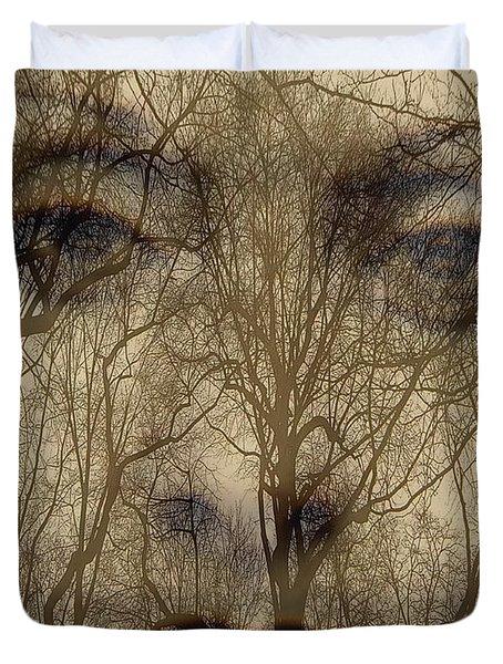 Asphalt - Portrait Of A Lady 2 Duvet Cover