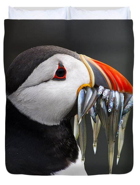 Atlantic Puffin Fratercula Arctica Duvet Cover by Wim Klomp