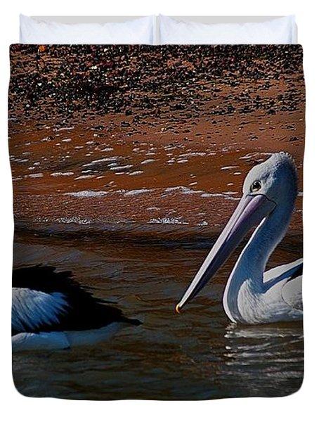 Australian Pelicans Duvet Cover