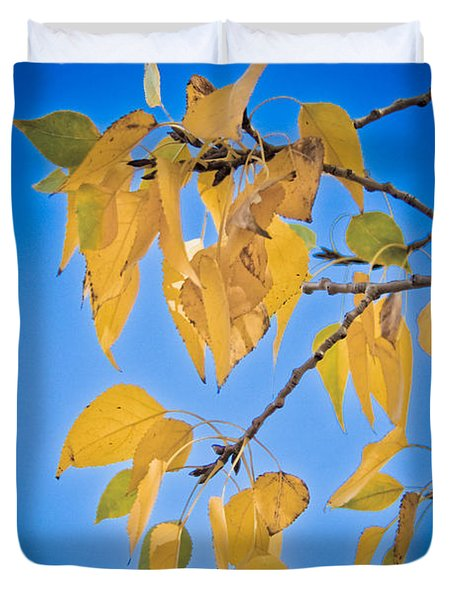 Autumn Aspen Leaves And Blue Sky Duvet Cover by James BO  Insogna