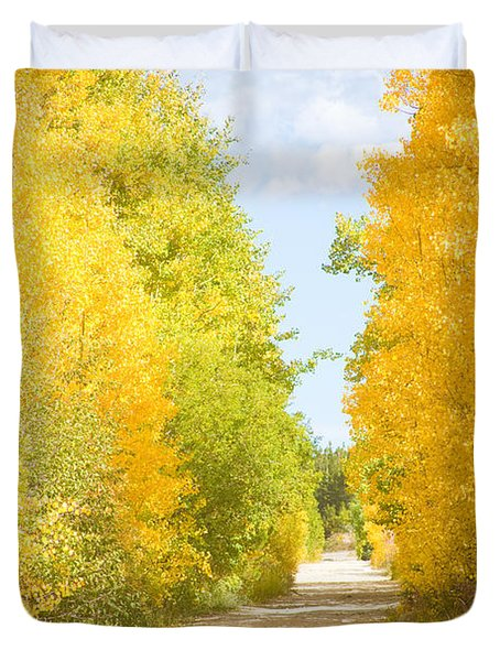 Autumn Back County Road Duvet Cover by James BO  Insogna
