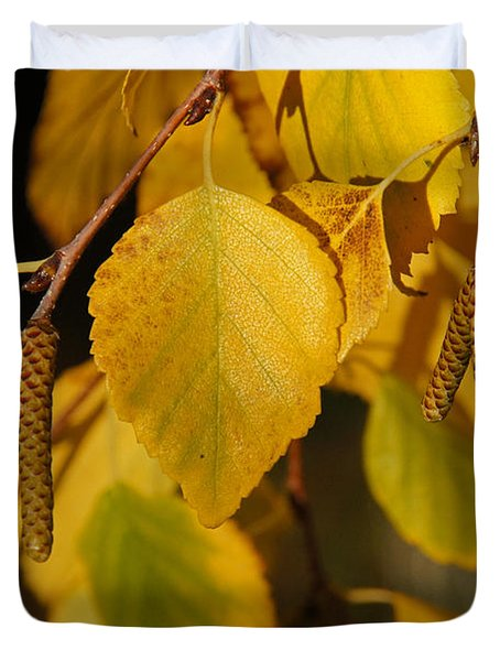 Autumn Birch In Southern Oregon Duvet Cover by Mick Anderson