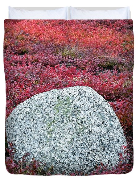 Autumn Blueberry Field Duvet Cover by John Greim