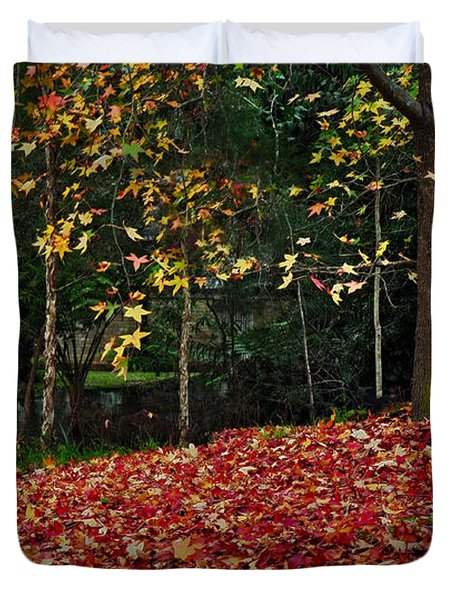 Autumn Colors Duvet Cover by Kaye Menner
