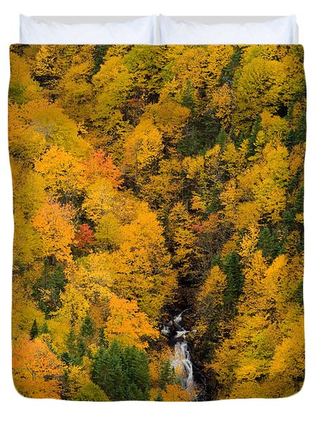 Autumn Colour And Waterfalls, Cape Duvet Cover by John Sylvester
