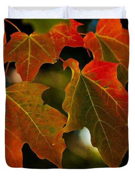 Autumn Glory Duvet Cover by Cheryl Baxter
