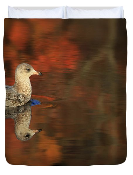 Autumn Gull Duvet Cover by Karol Livote