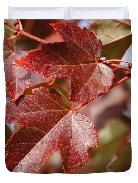Autumn In My Back Yard Duvet Cover by Mick Anderson