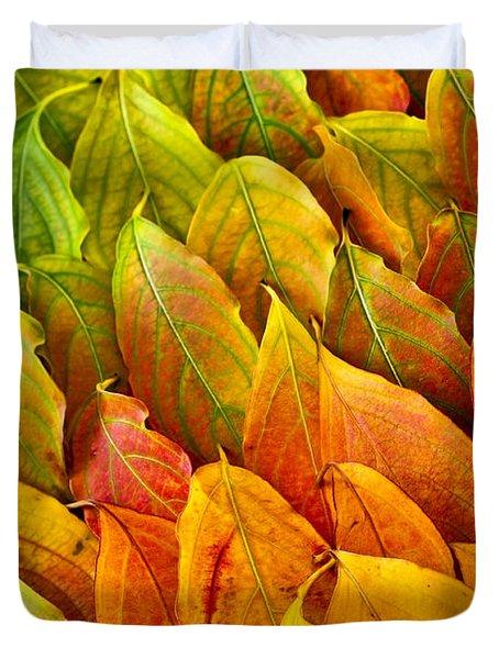 Autumn Leaves Arrangement Duvet Cover by Elena Elisseeva