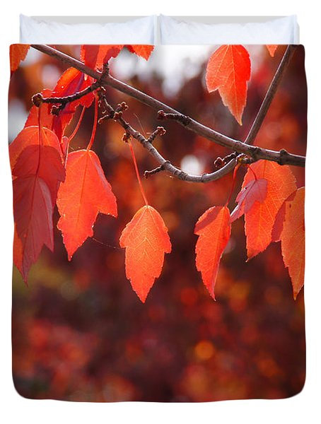 Autumn Leaves In Medford Duvet Cover by Mick Anderson