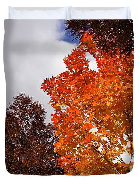 Autumn Looking Up Duvet Cover by Mick Anderson